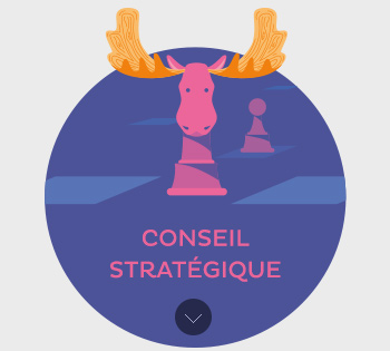 Conseil Stratégique