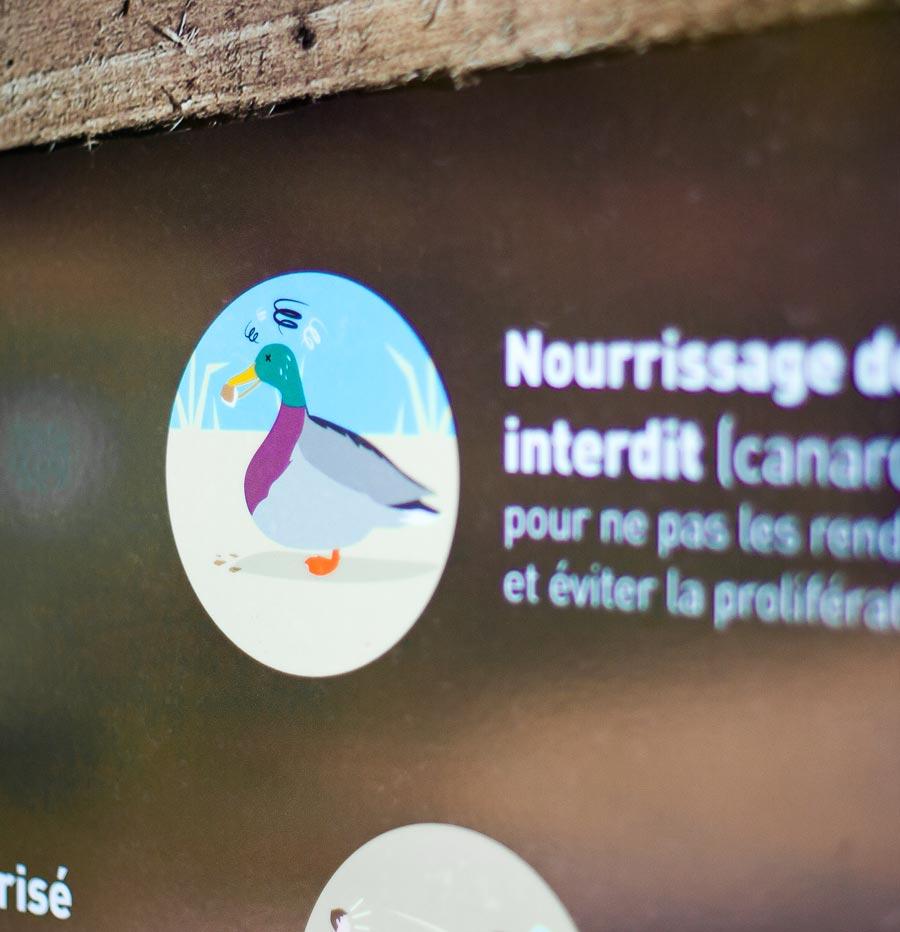 Ne pas nourrir les animaux - Détail d'illustration sur un panneau des Rives du Ter